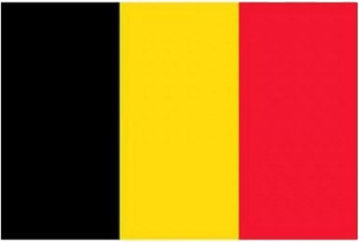 small belgian flag
